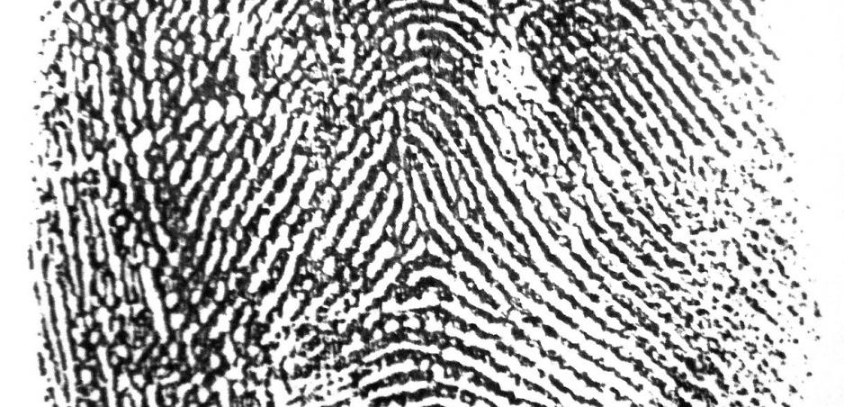 Biometria v automobilizme: Do roku 2020 môže byť realitou.