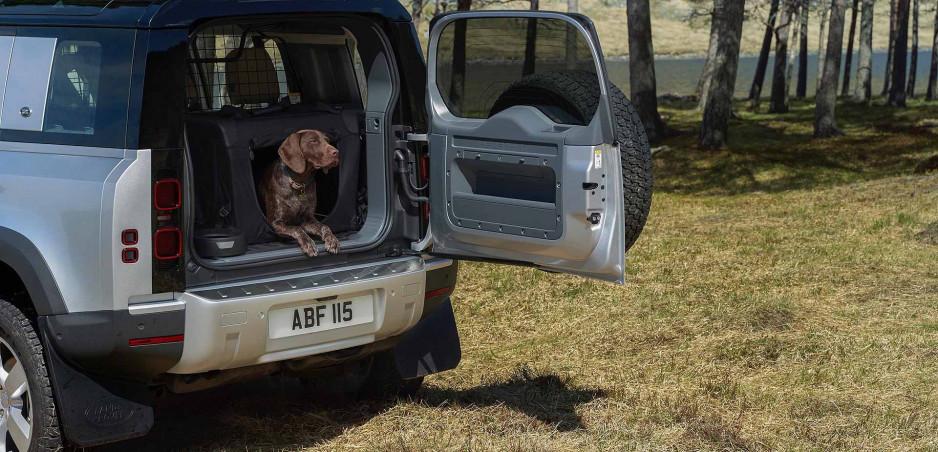 Land Rover testuje lak nových Defenderov psími labami
