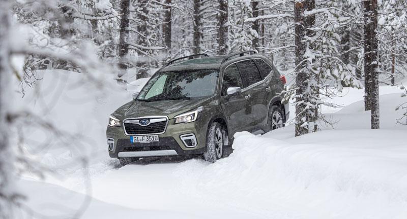 Subaru chystá drsnejšie modely Outback a Forester s označením Wilderness